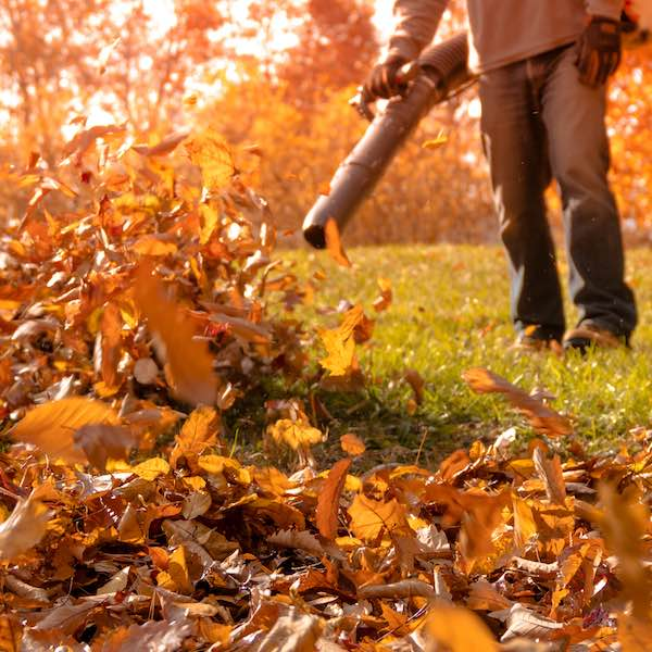 Spring & Fall Cleanups NH