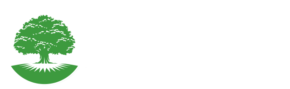 Perfection Landscaping