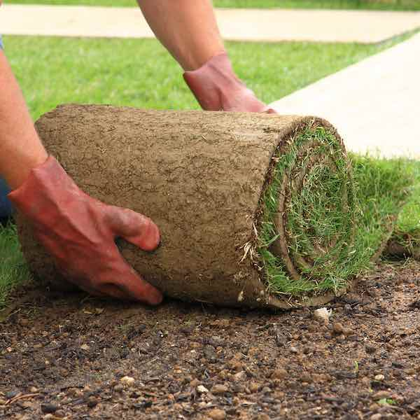 NH Sod Services