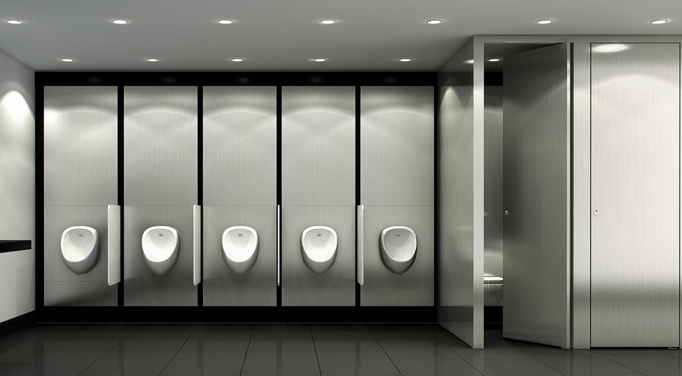 Thrislington Urinal and Toilet partitions